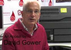 David Gower – General Appeal