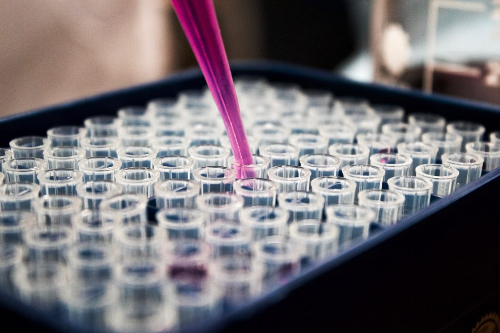 Pipette with pink fluid into test tubes